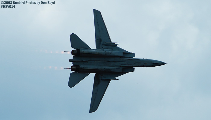 USN F-14 Tomcat from VF-101 Grim Reapers military aviation air show stock photo #3692