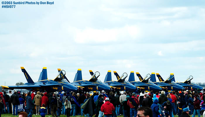 USN Blue Angels F/A-18 Hornets military aviation stock photo #3770