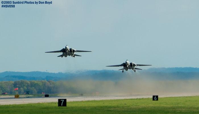USN F-14 Tomcats military aviation air show stock photo #3803