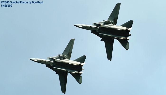 USN F-14 Tomcats military aviation air show stock photo #3805