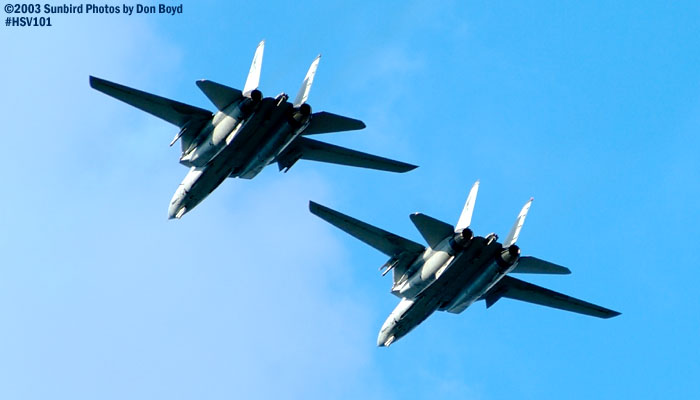 USN F-14 Tomcats military aviation air show stock photo #3806