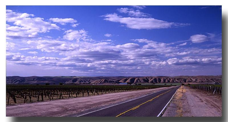 The View from Highway 41, Central California