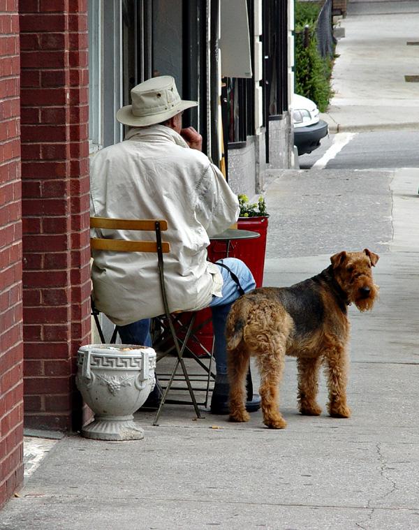 Sidewalk Diner and his Dog