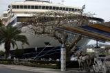 Hamilton cruise ships
