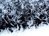 ice crystals 2033b.jpg