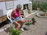 Joan sitting with the beautiful rose bush