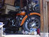 motorcycle at all bikes in Rye