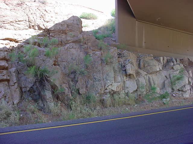Beeline highway at mile post 216