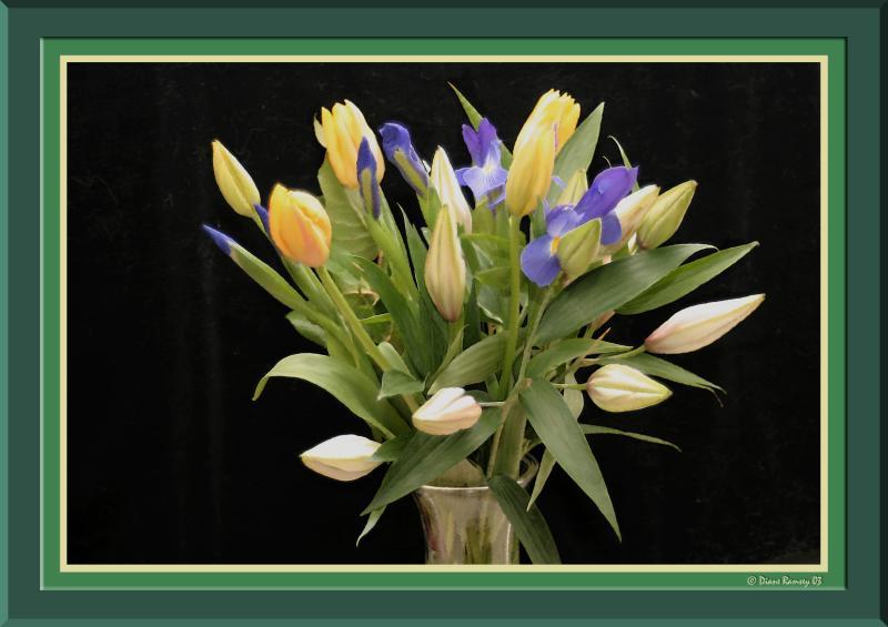 Effie-1 Bouquet