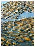 Myrtle Beach Ripples