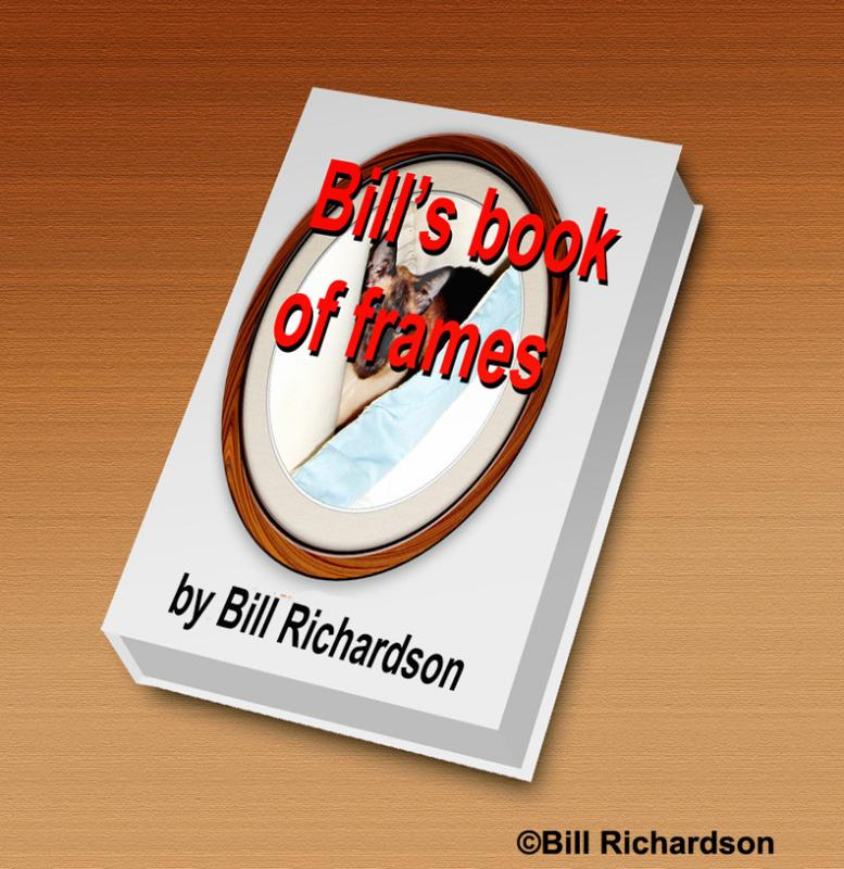 Bills book of frames4emailwcopyright.jpg