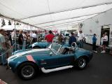 Shelby Cobra (yes, it's real!)