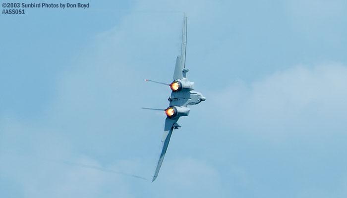 USN F-14D Tomcat #163414 military aviation air show stock photo #4282
