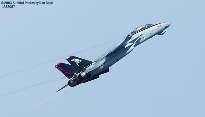 USN F-14D Tomcat #163414 military aviation air show stock photo #4293