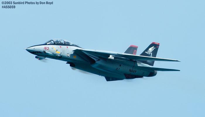 USN F-14D Tomcat #163414 military aviation air show stock photo #4295