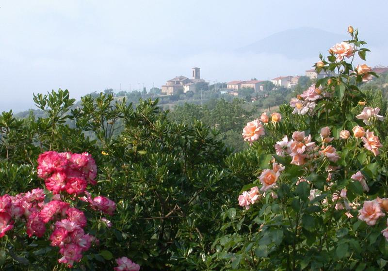 Village near Perugia, Umbria