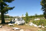 Tuolumne Meadows 1