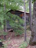 Noni's Cabin in the Woods!