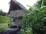 our home in a Karen village near Doi Inthanon