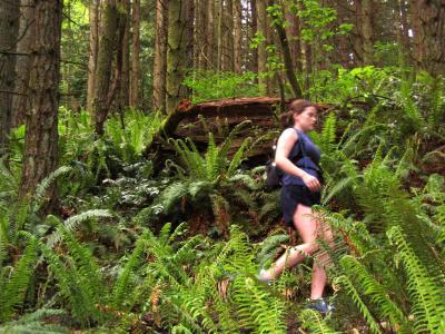 Deb -- Still climbing Poo Poo Point Trail