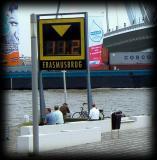 People at ease, admiring Erasmus bridge