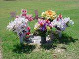 visiting Tarina on fathers day