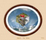 Bird Cube 02 Oval Frame.jpg