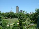 downtown-garden.jpg