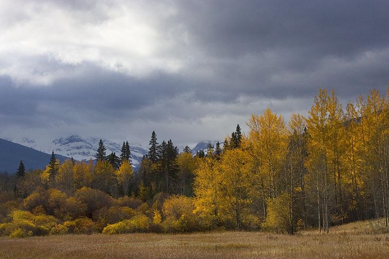 Rocky Mountain House (_P9E3206.jpg)