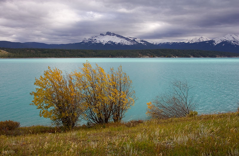 Lake Abraham (_P9E3214.jpg)