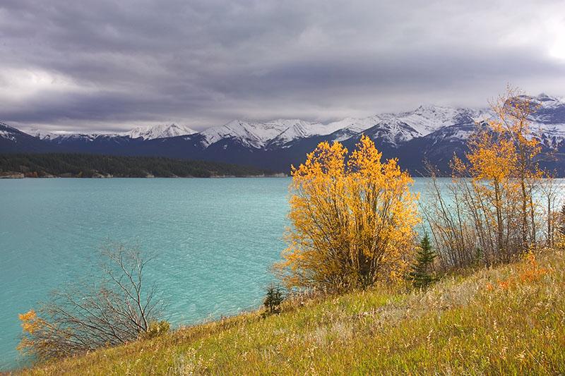Lake Abraham, Nordegg, Alberta (_P9E3211.jpg)