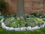 17. Hosta Garden - and other stuff