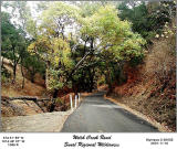 Hike up Flag hill at Sunol Regional Park