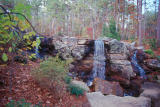 Garvan Woodland Gardens - Hot Springs, AR - Fall 2001