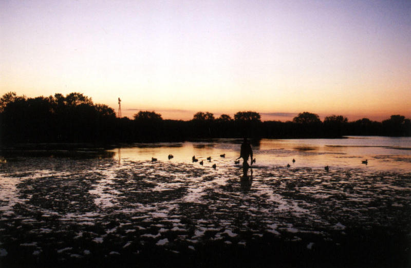 Retrieving Ducks - Opening weekend:  Fall, 2001.
