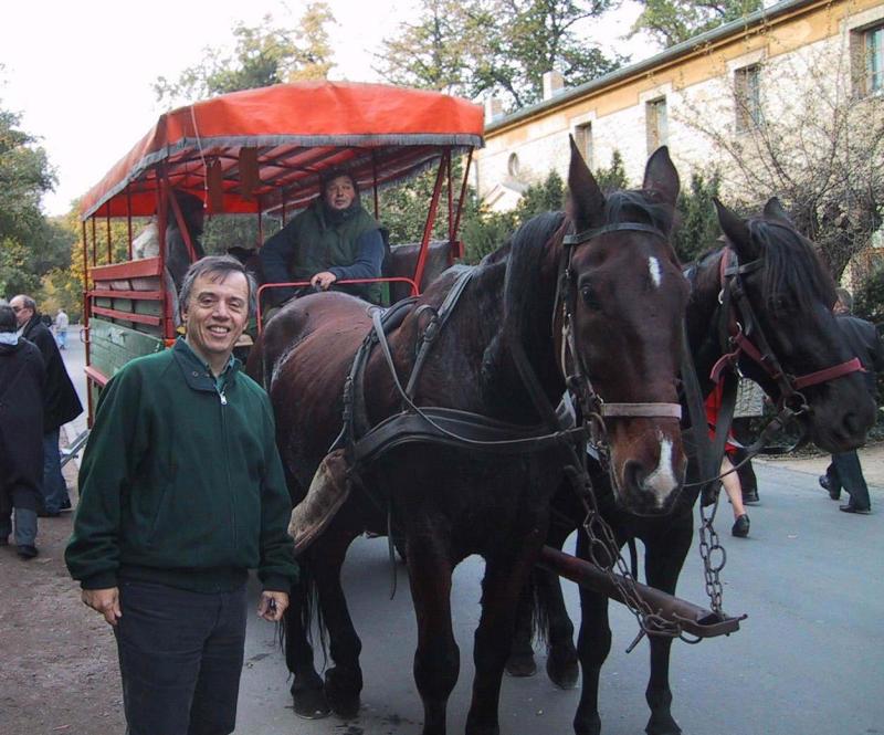 Potsdam-Horse Carriage-Rich.jpg