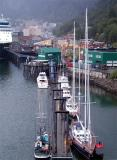 Boats  in Juneau  Harbor