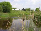 Beginning -- downstream shot
