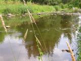 Finish -- downstream shot