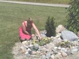 Carol's cactus.JPG