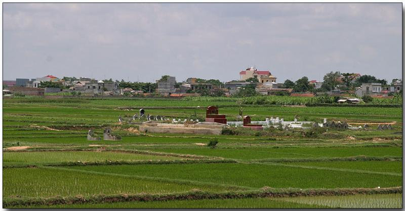 Cemetary in the rice paddies