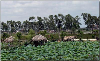 Aquiculture
