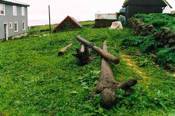 Rekaviður