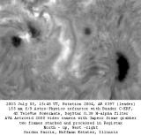 Active Region 0397, H-alpha