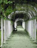 Jardim Botânico / Botanic Garden