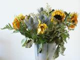 Dead Flowers 1