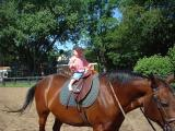This is my horse Holly, she is four and likes apples and carrots.