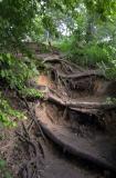 Stairs to Barton Creek, Austin, TX