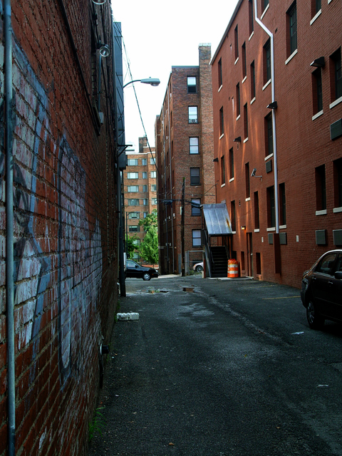Georgetown Alleyway