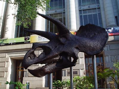 Triceratops Cast
